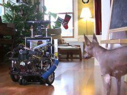"""Инженер из """"Майкрософт"""" изобрел робота для игры с собакой"""