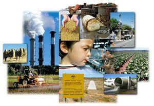 За загрязнение окружающей среды в Чернигове закрыта СТО