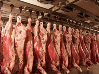 Африканская чума. Украина будет без мяса